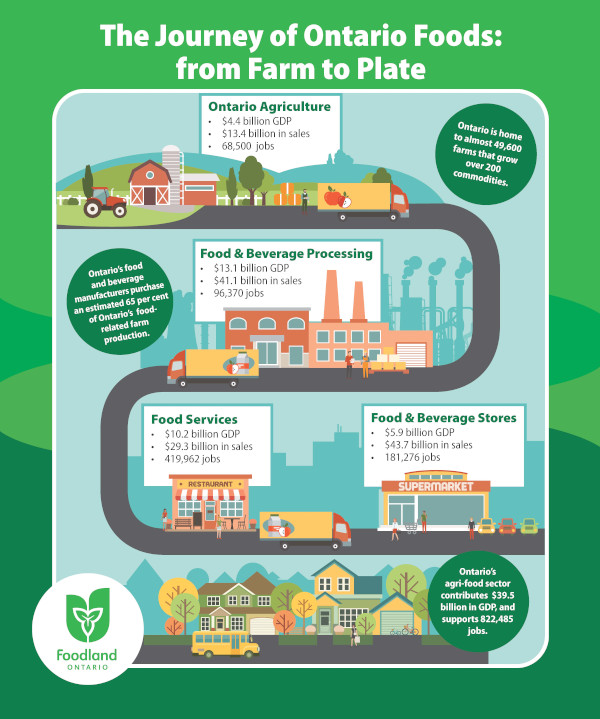 The Journey of Ontario Foods: from Farm to Plate
