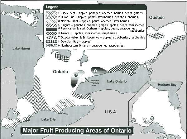 Major Fruit Producing Areas of Ontario