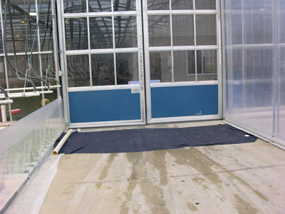Figure 8. Photo of a disinfection mat for small vehicles at the greenhouse entrance.