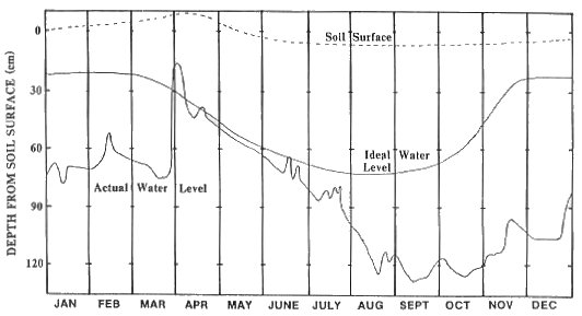 Chart showing actual and ideal water levels for an organic soil.