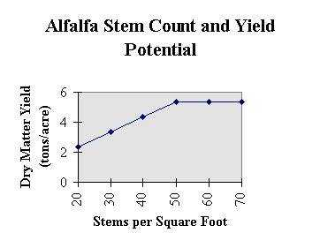 Alfalfa Stem Count and Yield Potential.
