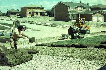 Figure 11. Typical sod installation in new home development.