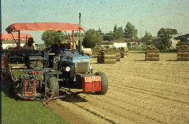 Figure 5. Conventional mechanical sod harvester.