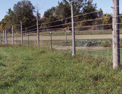 Figure 4-207. Deer fencing