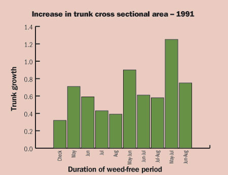 Figure 4-177. Tree growth in newly planted Gala/M26 trees under one month, two month or three month weed-free periods