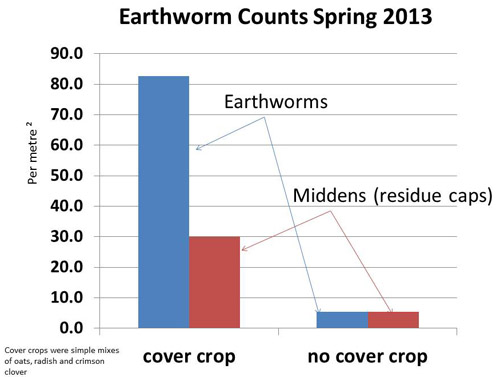 Chart showing more earthworms in cover crop treatments than in fields with no cover crops.