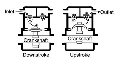 diagram of a diaphragm pump