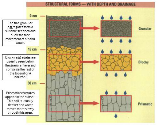 Form in structure for Soil structure