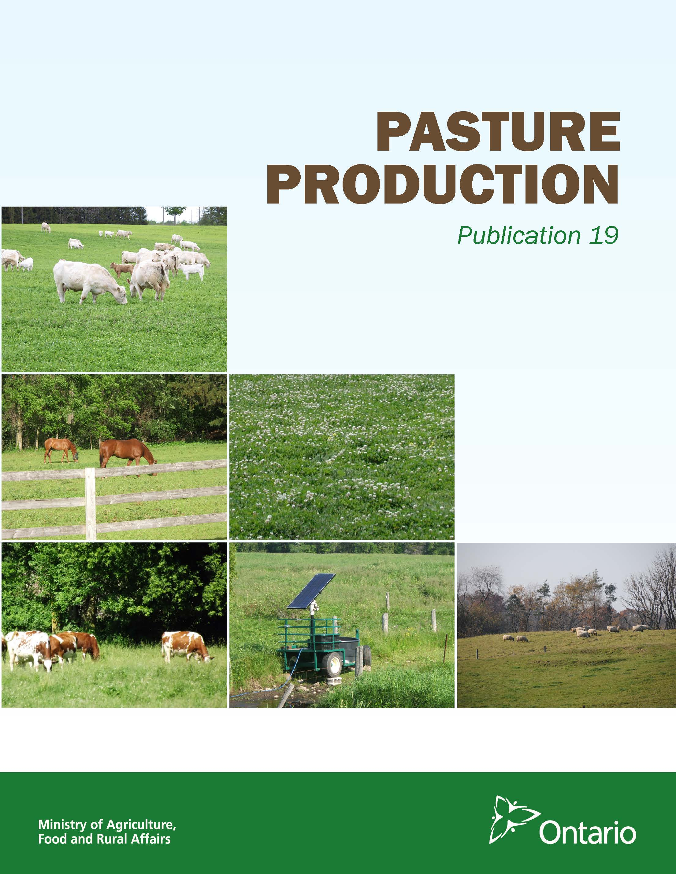 Front cover image of Publication 19, Pasture Production