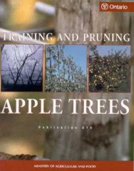 Front cover image of Publication 814, Training and Pruning Apple Trees