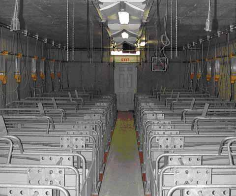 Photo of the inside of a swine farrowing room looking down the centre alley to a clearly marked exit door.