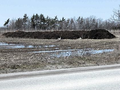Photo of a temporary field storage for beef manure.