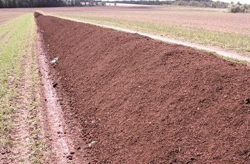 Photo of a temporary field storage of manure composted in a windrow.