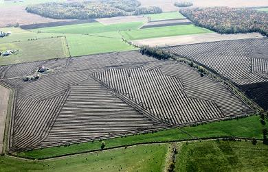 Aerial photo showing a field that has had a tile drainage system installed.