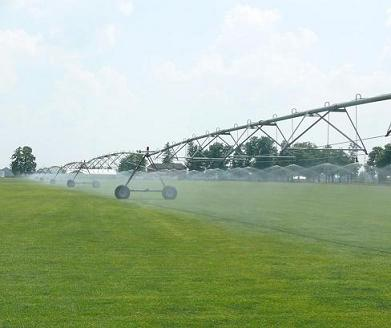 Photo of irrigation water being sprayed from overhead irrigation onto a sod field. The photo shows irrigation using a lateral move system with tubes, pressure regulators and spray nozzles dropping down from span.