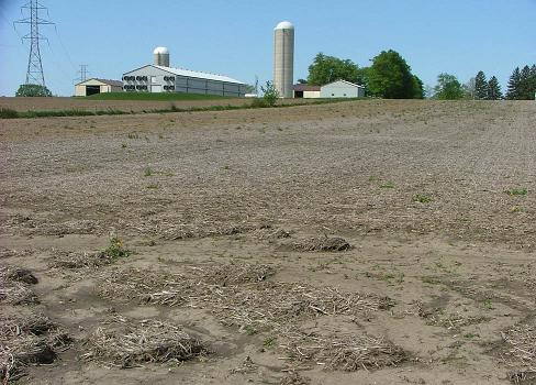 Picture of a harvested field showing deposits of soil and crop debris at the lower end.