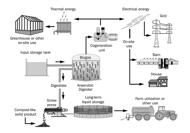 Typical process flow for the production of electricity and digestate in an on-farm biogas system.