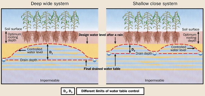 This figure shows the comparison between a deep and wide spacing drainage system and a shallow and narrow spacing system.