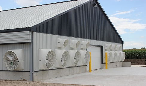Picture of the end wall of a barn showing 9 large fans (48-inch diameter) and 6 small fans (24-inch diameter) mounted across the end of the building. These fans exhaust air from the barn to create the wind tunnel effect inside barn.