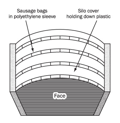 Figure 6. Sausage bag placement (drawing). This is a top view of a drawing showing recommended placement of the bags.