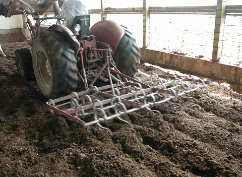 Tractor with drag harrows cultivating pack in barn