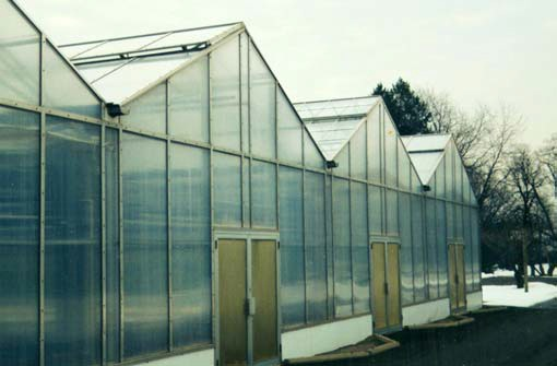 Surface Water Drained Off Greenhouse Roofs Has Been Collected Into Eavestroughs, So It Must Be Taken To A Sufficient Outlet