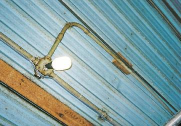Sealed compact fluorescent lighting in the barn provides a superior lighting environment compared to incandescent.