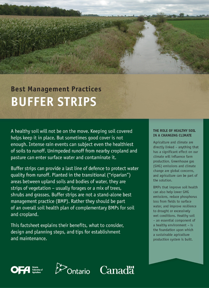 Buffer Strips