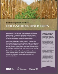 Inter-seeding Cover Crops