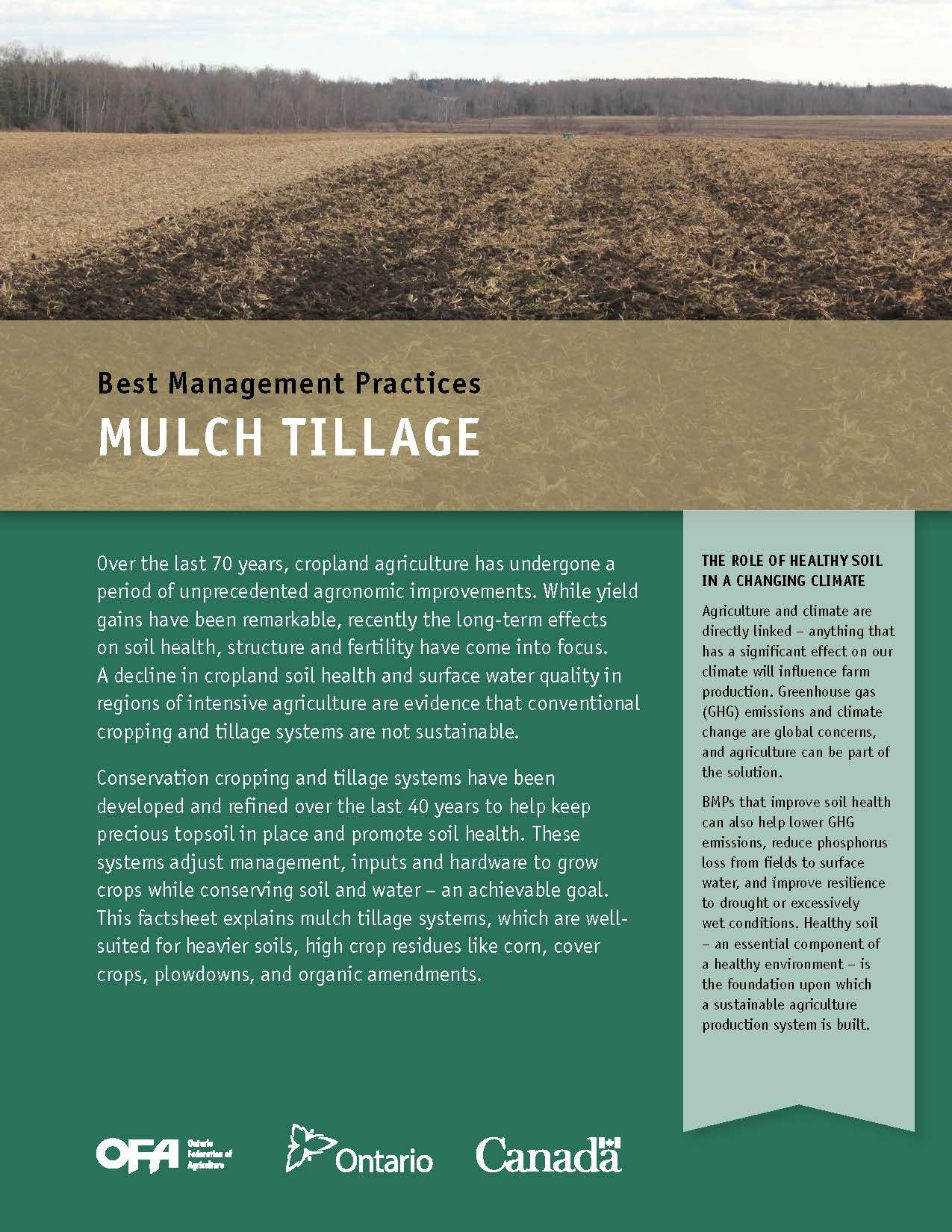 Mulch Tillage
