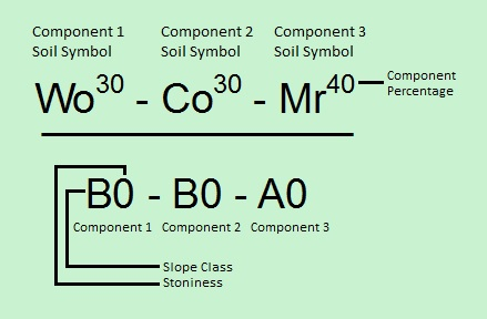 Three component label separated by dashes. Component percentages are a superscript of the Soil Symbol.  In the numerator: Component 1 has soil symbol Wo with component percentage 30, Component 2 has soil symbol Co with component percentage 30 and Component 3 has soil symbol Mr with component percentage 40.  In the denominator: Component 1 has a slope class B with stoniness 0, Component 2 has slope class B with stoniness 0 and Component 3 has slope class A with stoniness 0.