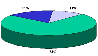 Pie chart of the rating of bruising severity in the baseline study