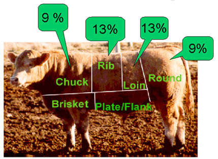 Graphic showing the location of critical bruising by percent for portions of the carcass
