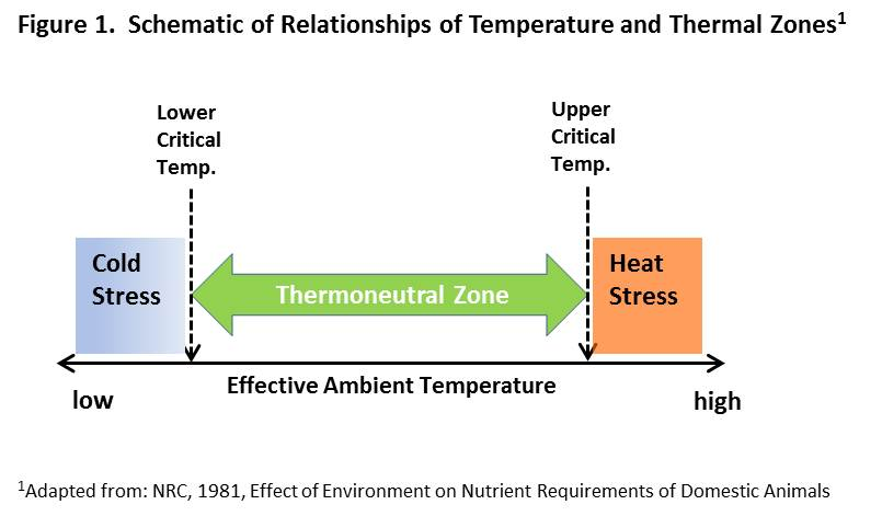 Schematic of Relationships of Temperature and Thermal Zones