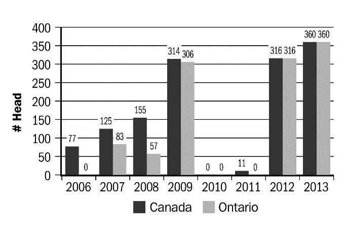 Figure 16. Number of live goat exports, 2006–2013. Source: Canadian International Merchandise Trade Database, Statistics Canada.