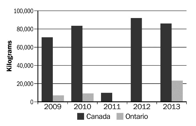 Figure 19. Volume of Canadian goat meat exports (kg), 2009–2013. Source: Canadian International Merchandise Trade Database, Statistics Canada.