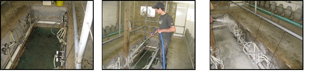 Figure 1 (from left to right): Applying a rich clinging foam; Removal of foam by power washing leaves a very clean surface; Foam application in a parlour