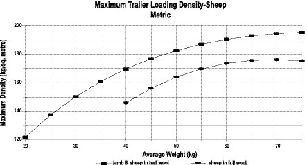Maximum trailer capacity for sheep transported standing based on average individual animal weight - Metric.