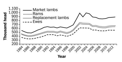 Figure 1. A line graph showing Canadian sheep flock inventories from 1984 to 2013. The y-axis (vertical) goes from 200,000 at the bottom to 1,100,000 at the top. The x-axis (horizontal) lists the years 1984 to 2013 from left to right. Changes in ewe, replacement lambs, rams and market lamb numbers show a slight decline in the late eighties, then a rise to a peak in the early 2000s and then a decline.