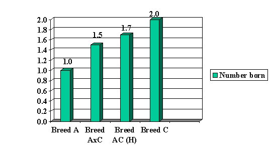 Figure 1. Chart showing the average number of lambs born for Breed A and Breed C.