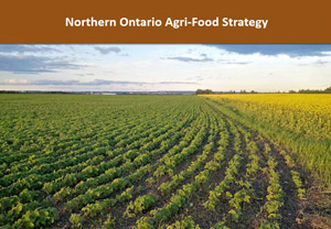 Growing the Agri-Food Sector in Northern Ontario