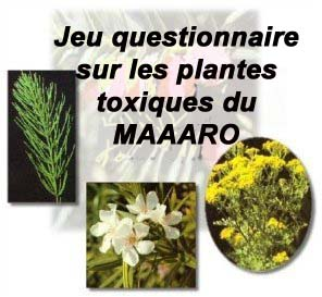 jeu questionnaire sur les plantes toxiques du maaaro. Black Bedroom Furniture Sets. Home Design Ideas