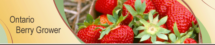 Ontario Berry Grower